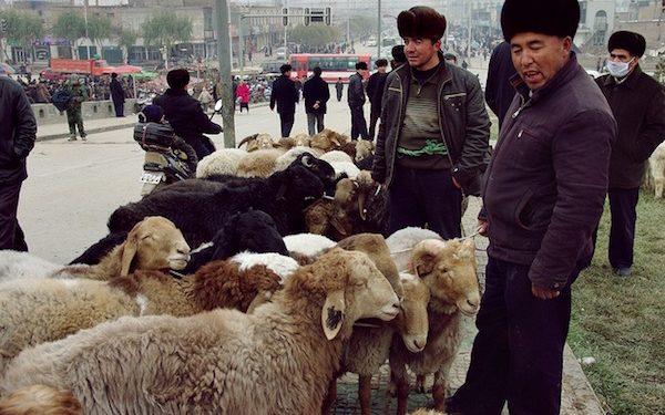 Muslim China saat menjual hewan kurban di pinggir jalan (Ist)